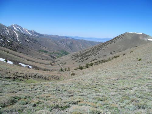 Toiyabe 10,960 and Washington Creek Drainage