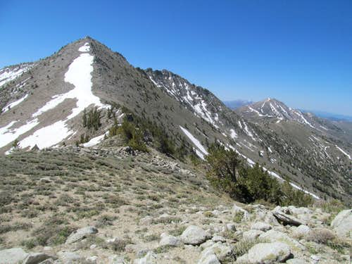 Toiyabe 11,085 North Ridge
