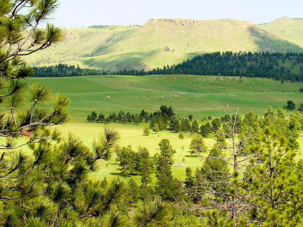 Matias View of Johnson Ranch