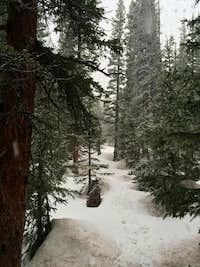 Snowfall in Horn Fork Basin