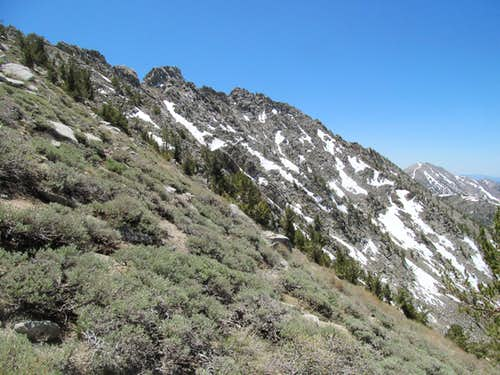 granite south summits of Toiyabe 11,085
