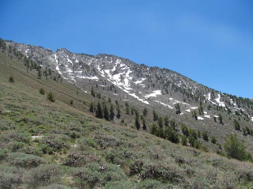 south ridge of Toiyabe 11,085