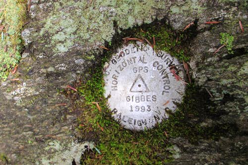 Mount Gibbes Benchmark
