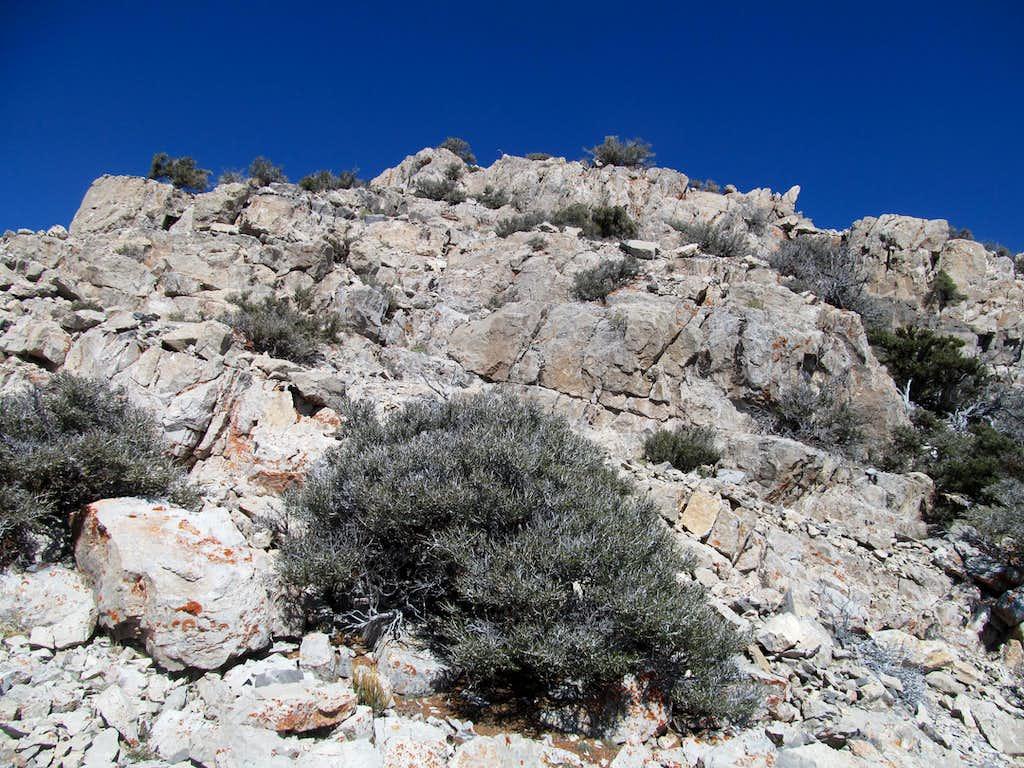 scrambling along the ridge crest
