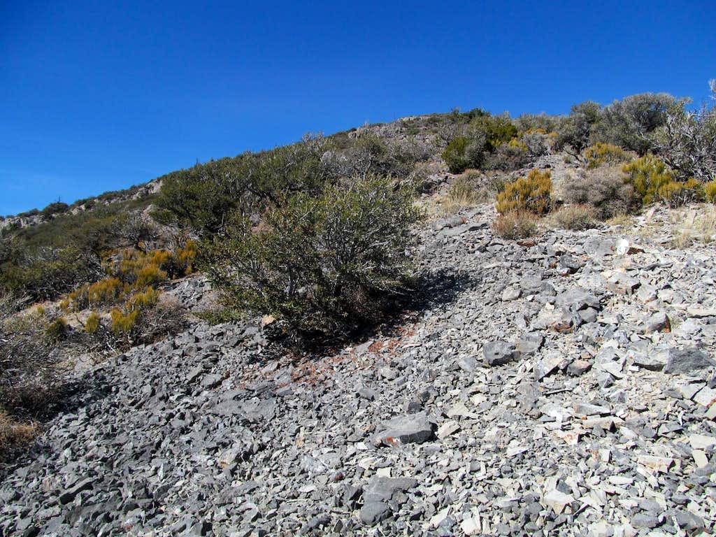 ascending the SE ridge