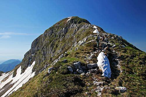 On the northern ridge of Monte Verzegnis