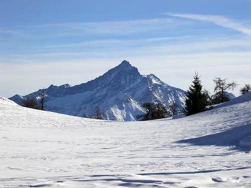 La Grivola (3969 m.) vista...