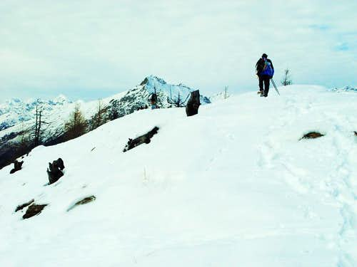 77 Routes in 7 Valleys by Snow Shoes Comagne 2002