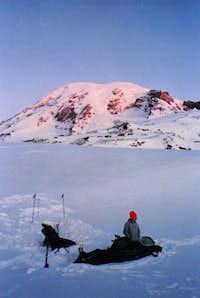 Paradise Glacier Moraine Winter Camp