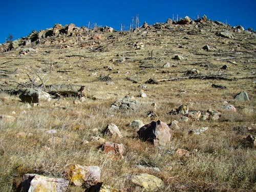 Parker Peak Slopes