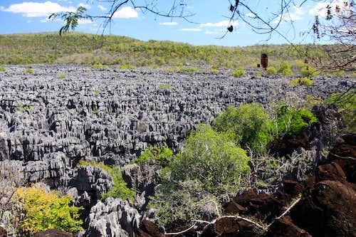 Madagascar 2014