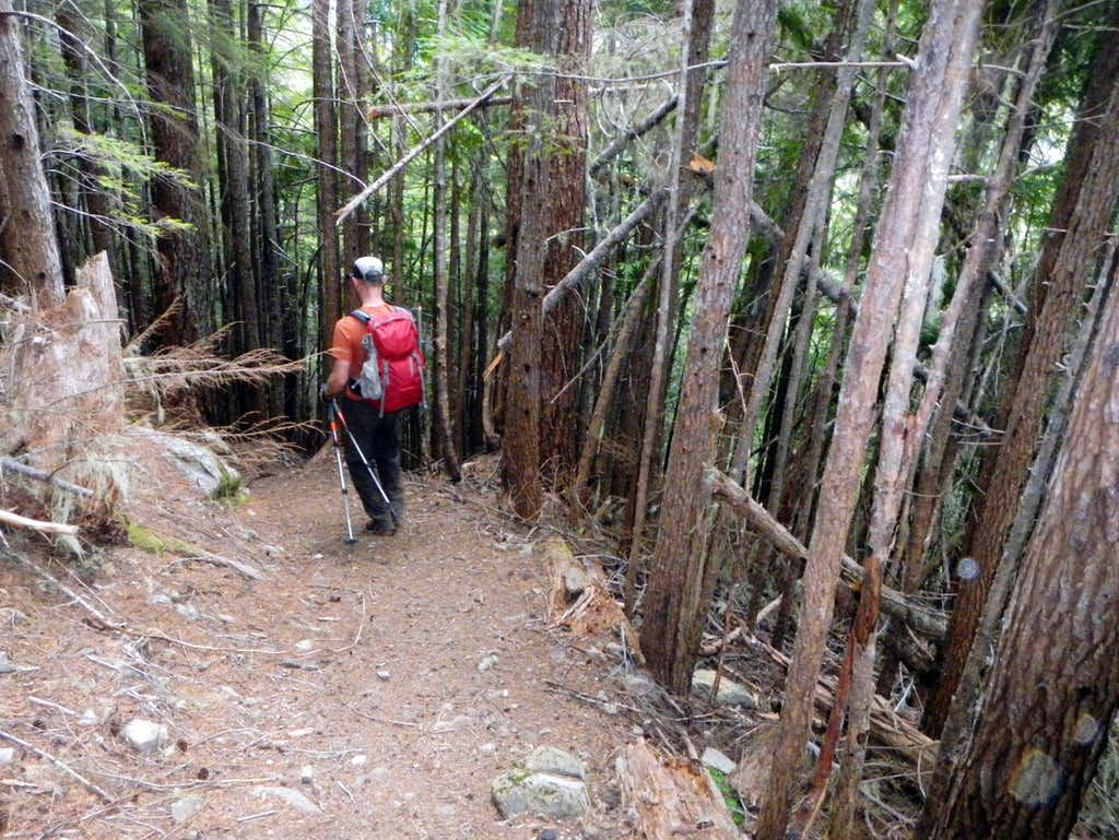 Wagonwheel Lake Trail