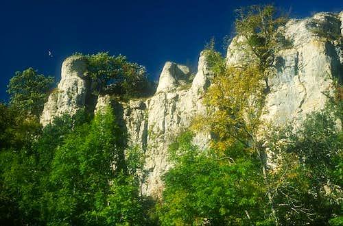 Saffres cliff