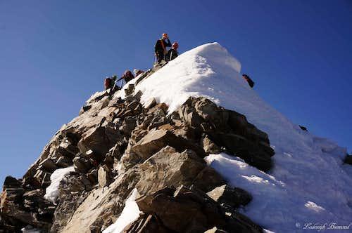 Climbers on the summit of Lagginhorn (4010m)