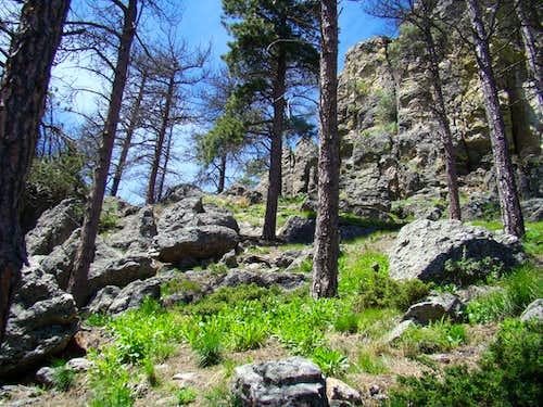 A little easy hiking on Sylvan Peak