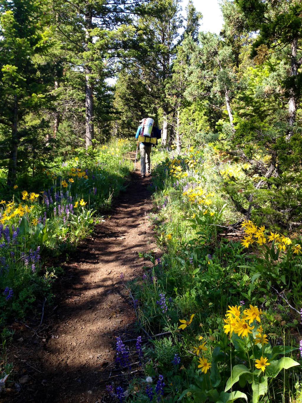Fire Memorial Trail
