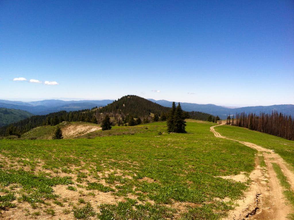 Wilson Peak '7837