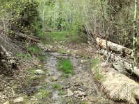 Ibapah Trail Creek 2