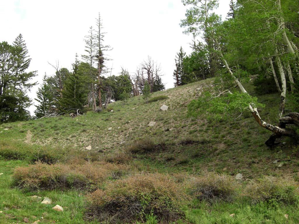 Ibapah Approach to High Meadow