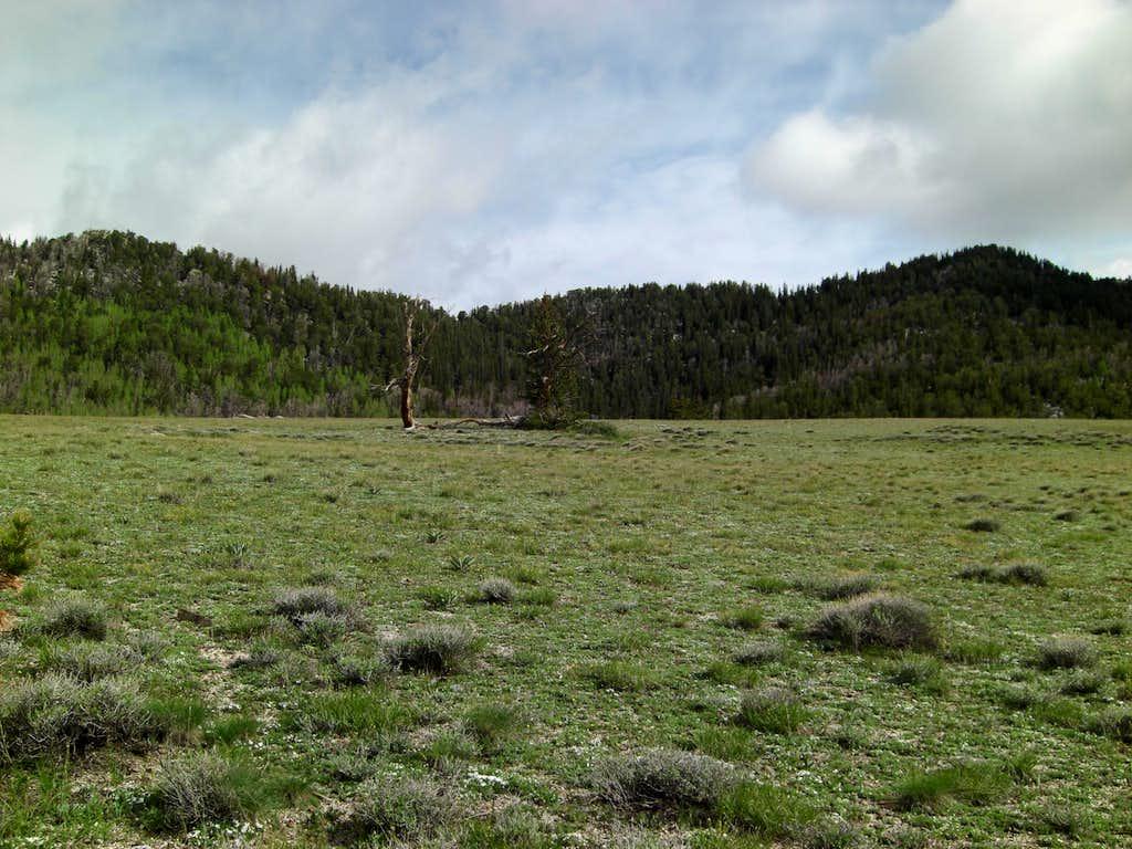 Ibapah High Meadow Goal!