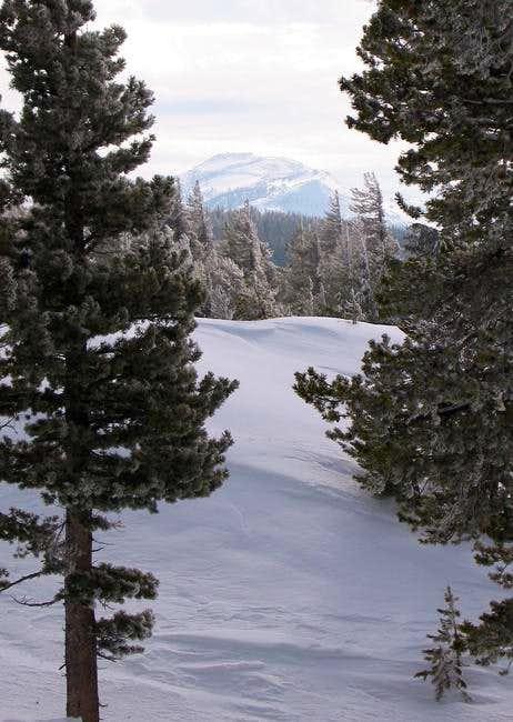 Stevens Peak from the...