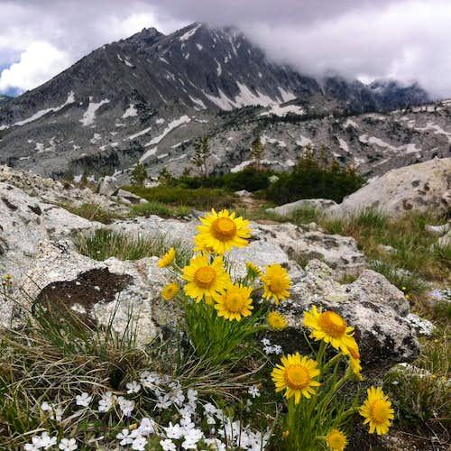 Lone Peak from Chipman Peak