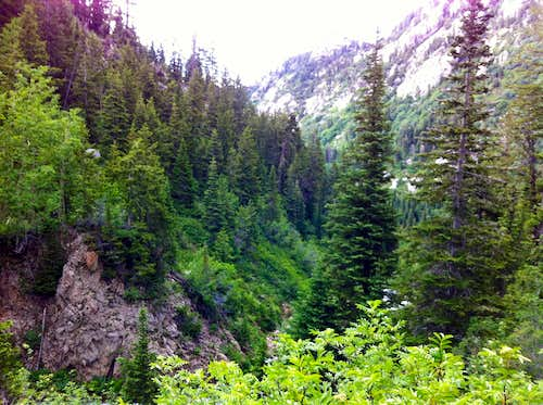 Green Bells Canyon