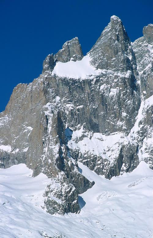 La Meije Grand Pic