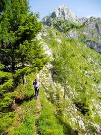 Vrh Krnice path (from Kluže)