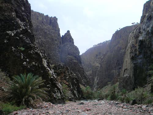 Dirhor Canyon