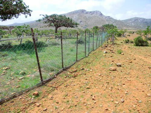 Homhil Protected Area plot without Goats