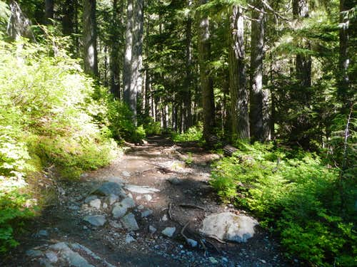 Summerland Trail