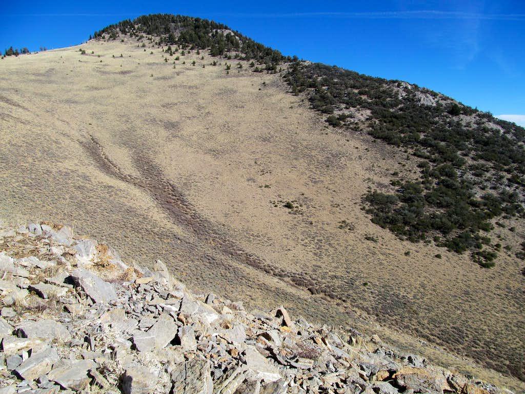 ascending SW slopes of Telegraph
