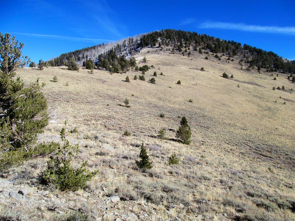 near the summit block