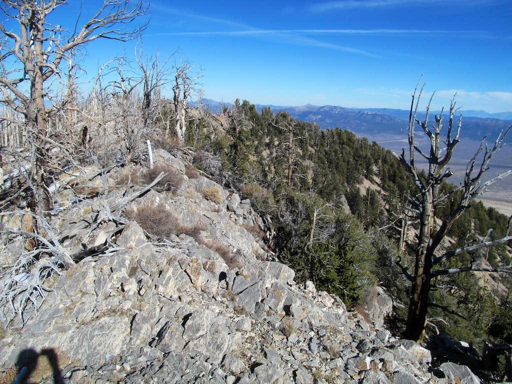 the summit ridge area of Telegraph