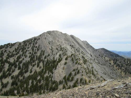 Currant Mountain,  a Nevada gem