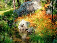 Galena Creek Fall Colors