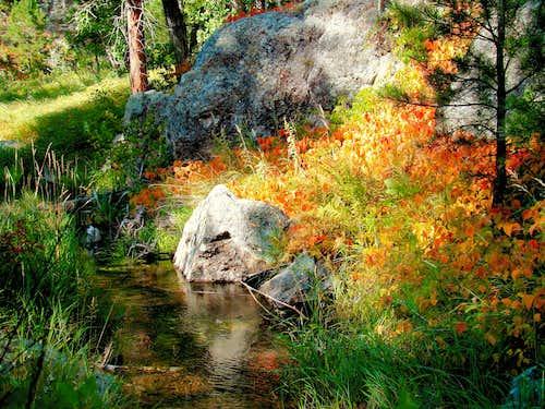 Galena Creek Fall Colors