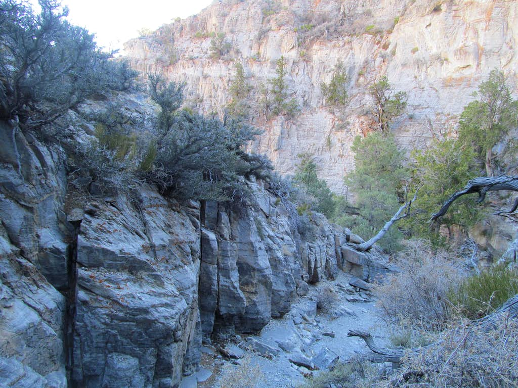 descending Sawtooth Canyon