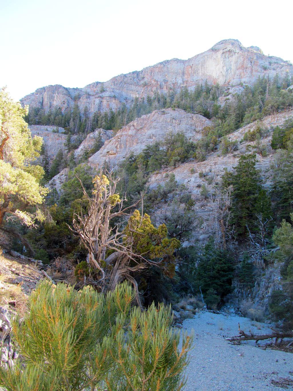 cliffs above Sawtooth Canyon