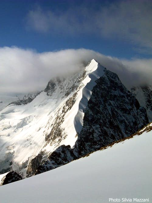 Piz Bernina and Biancograt seen from Piz Morteratsch