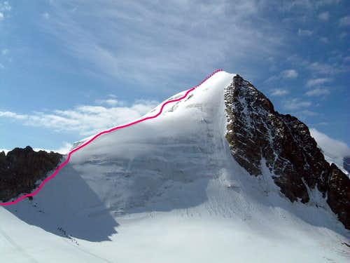 Piz Morteratsch North Ridge topo