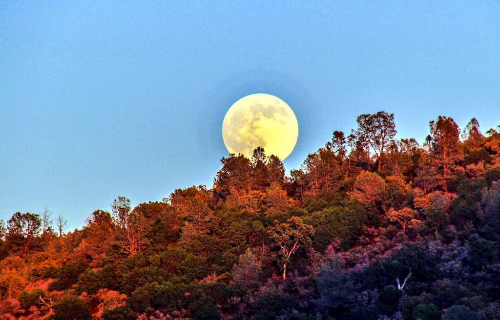 July moon over Quackenbush Mtn.