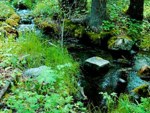 Creek along Bear Mountain Trail