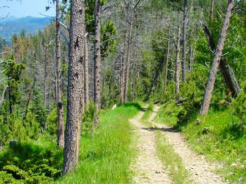 Bear Mountain Upper Trail