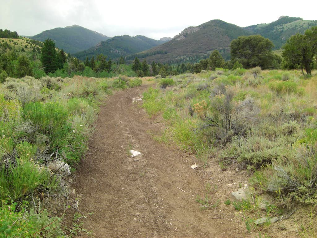Bull Mountain early trail.