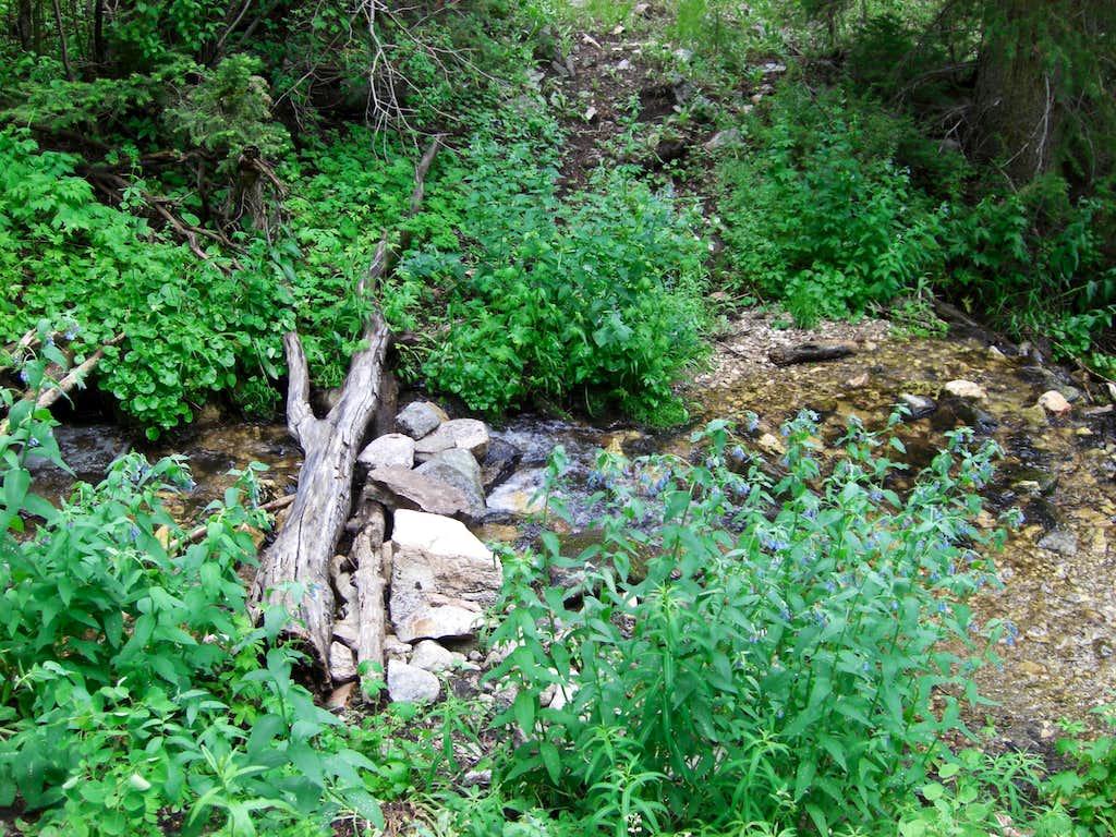 Bull Mountain Creek Crossing