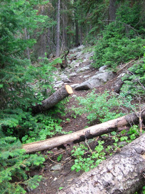 Bull Mountain Trail West Bank Rocks
