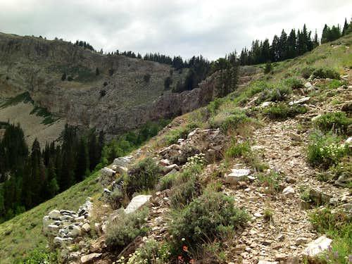 Bull Mountain RAMP