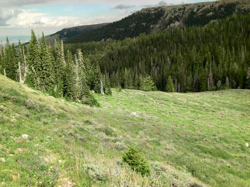 Bull Mountain Ramp Bottom